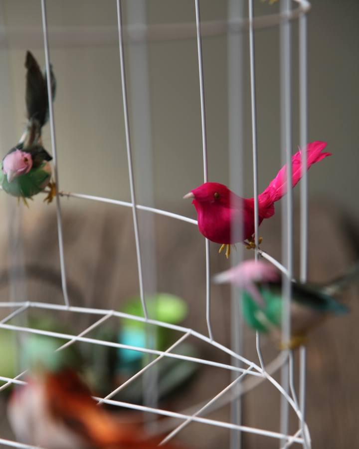 vogeltuin eigen huis en tuin